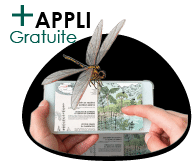 application gratuite du sentier Cap'Découverte